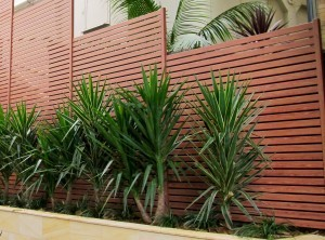 Slat / Privacy: Knottwood