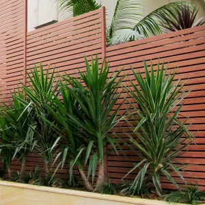 Knottwood Slat Privacy Fencing