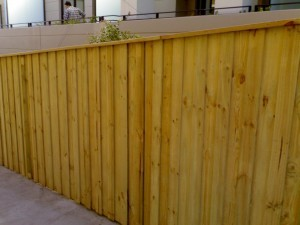 Treated Pine: Lapped & Capped Paling