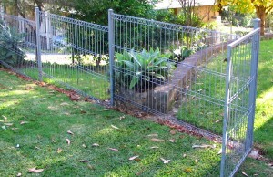 Backyard Weldmesh Fencing