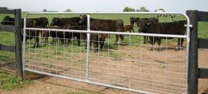 Rural Fencing: Farm Gates