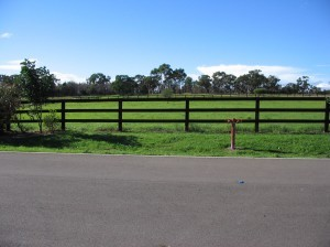 08. Rural