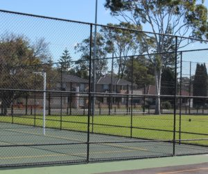 Netball Court Rail Chainwire Fencing