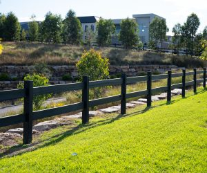 Treated Pine Rural Fence - Painted Rail